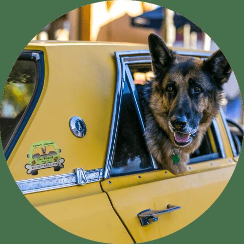 German Shepherd On Board Car Magnet Car Accessories German Shepherd