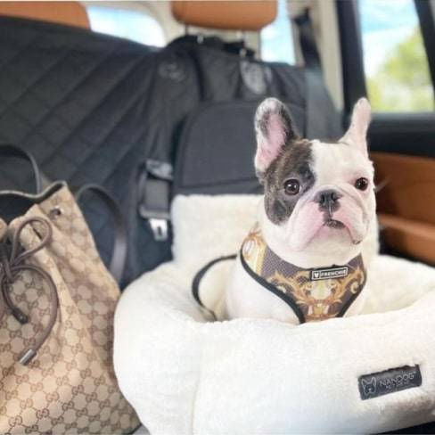 Ivory Cloud Car Seat Best dog car seat cover Car Accessories 10 ivory