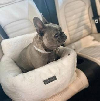 Ivory Cloud Car Seat Best dog car seat cover Car Accessories 13 ivory