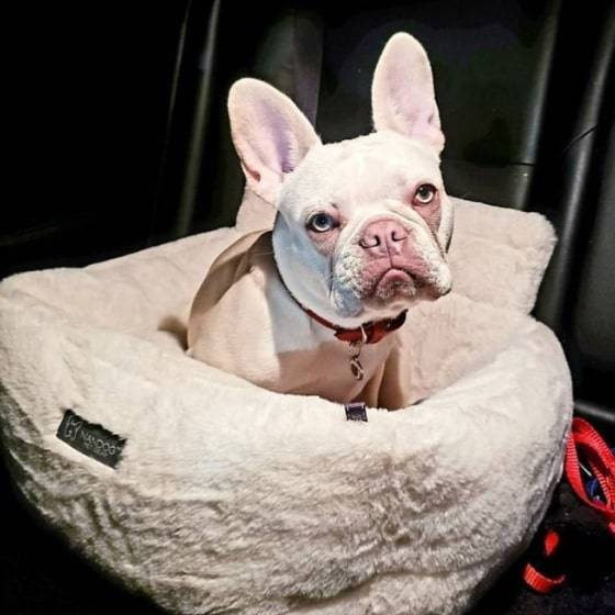 Ivory Cloud Car Seat Best dog car seat cover Car Accessories 7 ivory